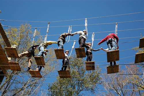 Aerial Team Course - Adventure Challenge Ropes Course