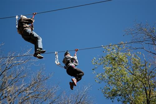 600' Zip Line - Adventure Challenge Ropes Course