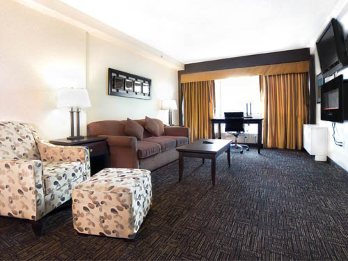 Executive Suite- Living Room
