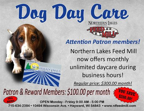 Bring your dog in for a day of fun at the Mill!