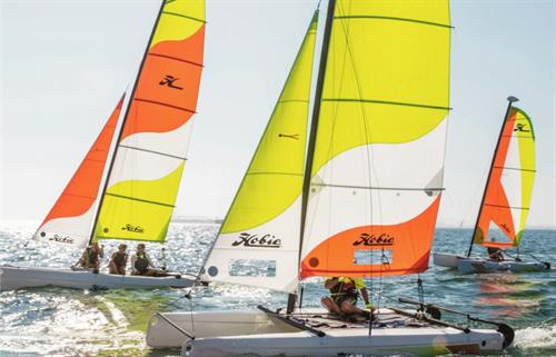 Hobie Cat Sailboat Sales