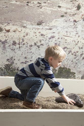 Exhibit: Dino Dig