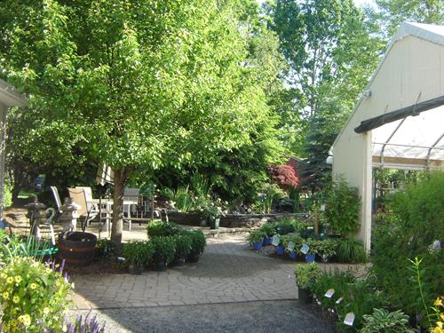 Gallery Image garden_center_6-6-11_081.jpg
