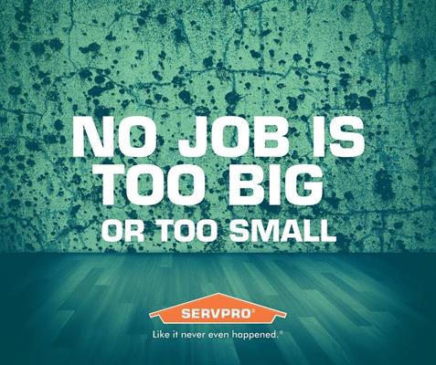 Servpro of Hampshire County