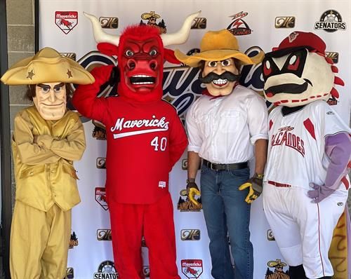 The 4 team mascots - can you name them?
