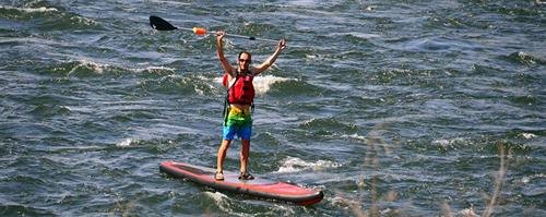We offer SUP board rentals for the day too!