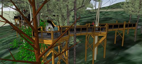 New Forest Canopy Walk, opening fall 2019