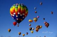 Carolina BalloonFest - Courtesy Michele Cooke