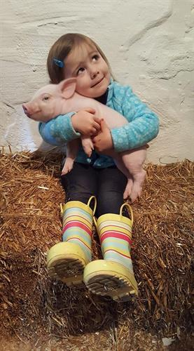 Farm Babies Last 2 weekends in March first 2 weekends in April