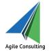 Agile Consulting, LLC