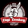 Digi Donkey Web Design