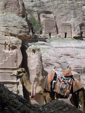 Perhaps Petra? I can get you there!