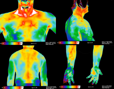 Sample Upper Body Images