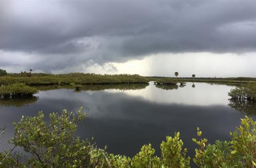 Wildlife Refuge as afternoon storm approaches