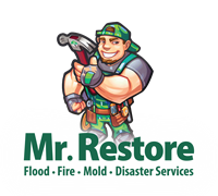 Mr. Restore Services