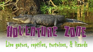 Live reptiles in the Adventure Zone