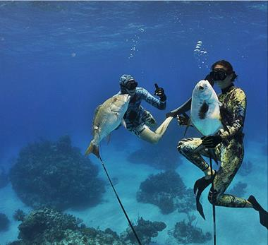 Dive & Spear fishing gear