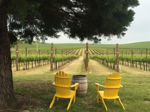 Sit back, relax and enjoy a glass of all Walla Walla has to offer