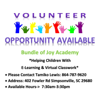 Bundle of Joy Academy