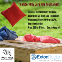 Member-Only Corn Hole Tournament at Iron Hill Brewery TapHouse