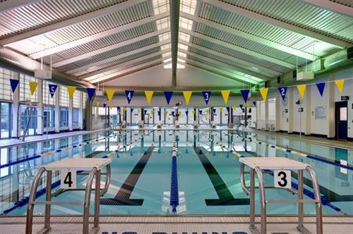 Pool Bloomington IL