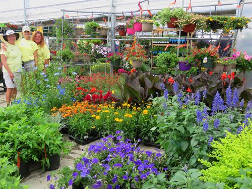 The most beautiful plants in Texas, and friendliest, most knowledgeable staff around!
