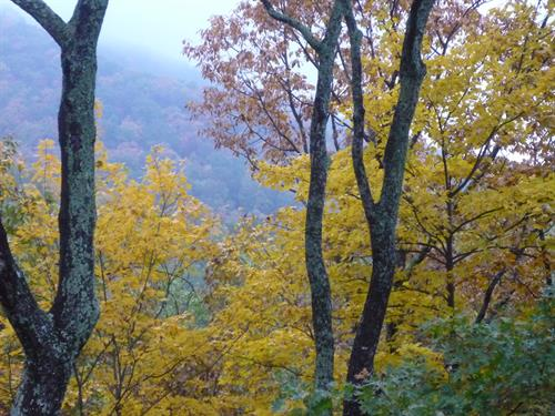 Fall view from our deck at Big Canoe