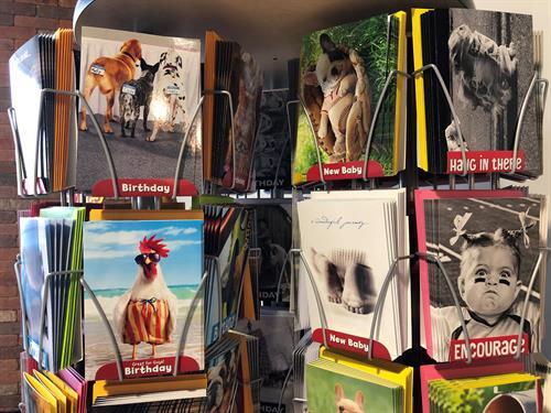 Gallery Image Avanti_cards_3_(2).jpg