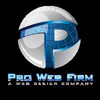 Pro Web Firm