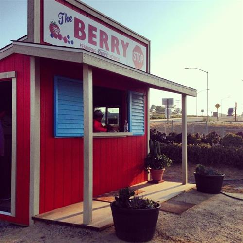 The Berry Stop