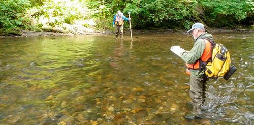 Collecting Aquatic Habitat Data to Determine Stream Health