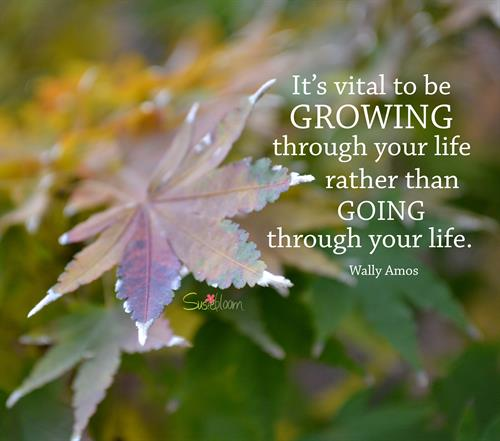 This is a great quote.  It's best to GROW through life!
