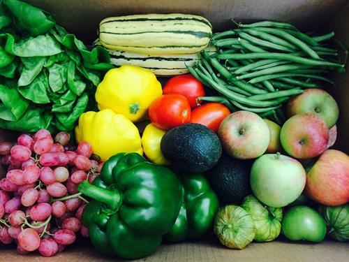 October Fresh Harvest