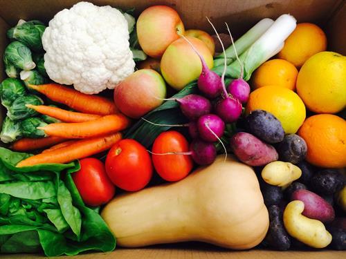 Thanksgiving Fresh Harvest