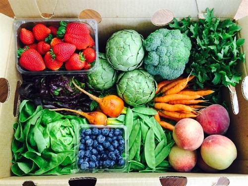 June Fresh Harvest
