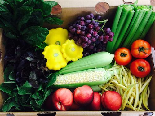 July Fresh Harvest