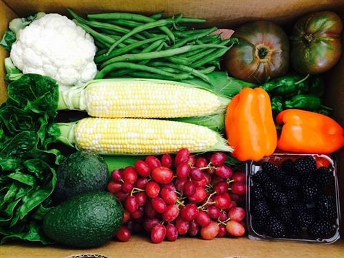 August Fresh Harvest