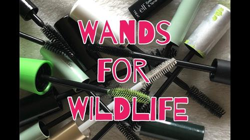 I collect mascara wands and donate to a wildlife rescue!