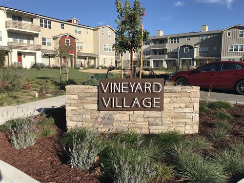 Vineyard Village Community