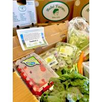 Babé Farms Donates Fresh Produce to Mission Hope Cancer Center