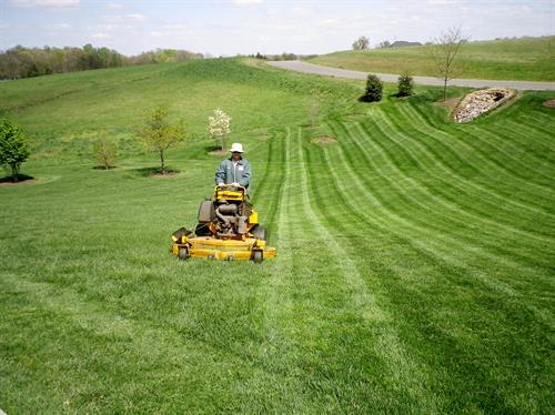 Landscape Mowing