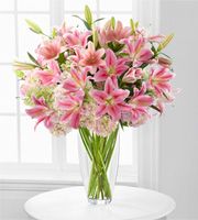 All about Lilies