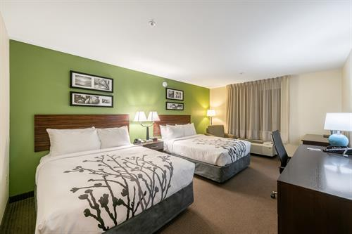 Our large double room with 2 Queen Beds