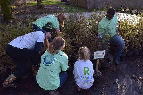 Planting trees at Lake Sammamish State Park