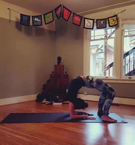 Yoga @ Bloom Juice! Join us for free candlelight yoga on Fridays at 7:30pm
