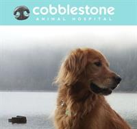 Cobblestone Animal Hospital
