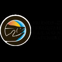Friends of the Issaquah Salmon Hatchery Seeking New Board Members