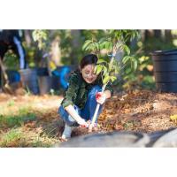 Giving back is the focus of Dunwoody Volunteer Day
