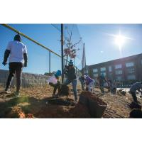 Dunwoody celebrates Martin Luther King, Jr. Day of Service with community projects