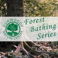 Dunwoody Nature Center Presents: The Forest Bathing Series